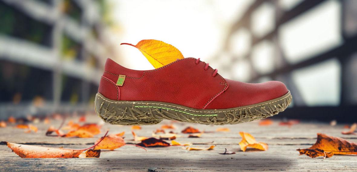 Die Herbstmodelle